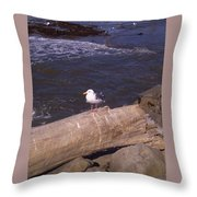 King Of The Seagulls Throw Pillow