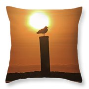 Seagull On A Post Throw Pillow