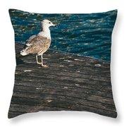 Seagull On The Pier Throw Pillow