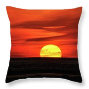 Seagull Sunset Throw Pillow
