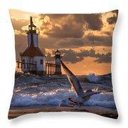 Seagull Takeoff - Tiscornia Beach  Throw Pillow