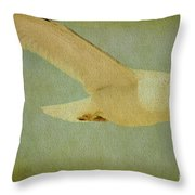 Seagull Texture Throw Pillow