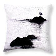 Seagull Waiting Throw Pillow