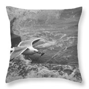 Seagull With Bread Throw Pillow