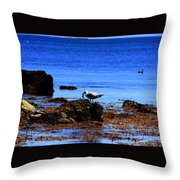 Seagull With Crab Throw Pillow