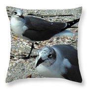 Seagulls #3 Throw Pillow
