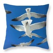 Seagulls #4 Throw Pillow
