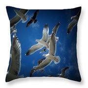 Seagulls Above Throw Pillow