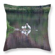Seagulls At Lake Throw Pillow