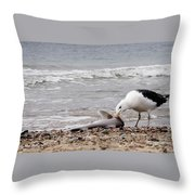 Seagulls Catch Of The Day Throw Pillow