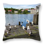 seagulls near a pond in the center of Reykjavik Throw Pillow