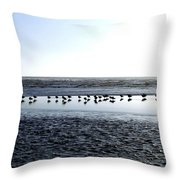 Seagulls On A Sandbar Throw Pillow