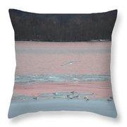 Seagulls On The Potomac Throw Pillow