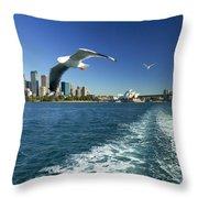 Seagulls Over Sydney Harbor Throw Pillow