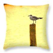 Seagulls Sunset Throw Pillow
