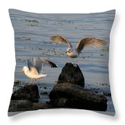 Seaguls 3 Throw Pillow