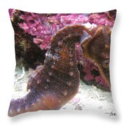 Seahorse4 Throw Pillow