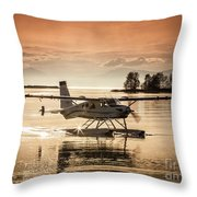 Seair Beaver 1 Throw Pillow
