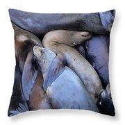 Seal Buddies Throw Pillow
