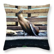 Seal Cheerleader Throw Pillow