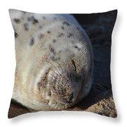 Seal Dream Throw Pillow