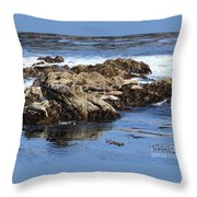Seal Island Throw Pillow