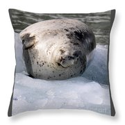 Seal On Iceberg Throw Pillow