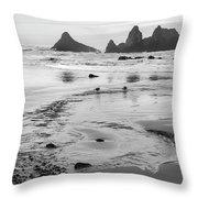Seal Rock 0169 Throw Pillow