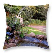 Seal Statue Fountain 1 Throw Pillow