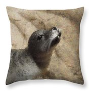 Seal With A Kiss Throw Pillow