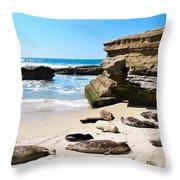Seals Siesta On La Jolla Beach Throw Pillow