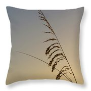 Seaoats At Dawn Throw Pillow