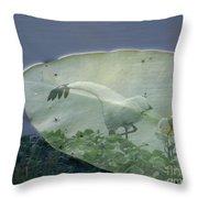 Search Throw Pillow by Priscilla Richardson