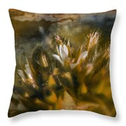 Searching For An Identity Throw Pillow