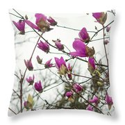 Searching For Sunshine Throw Pillow
