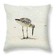 Searching Plover Throw Pillow