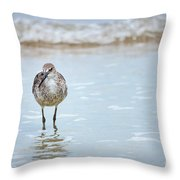Searching Throw Pillow by Todd Blanchard