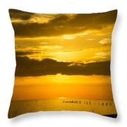 Seascape Gulf Coast, Ms G10i Throw Pillow