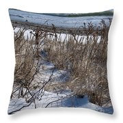 Seascape In Winter Throw Pillow