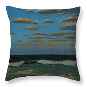Seascape With Tearns Throw Pillow