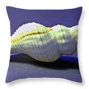 Seashell Fusinus Irregularis Throw Pillow