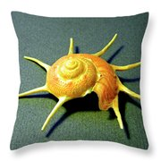Seashell Guildfordia Yoca Throw Pillow