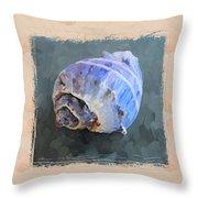 Seashell IIi Grunge With Border Throw Pillow