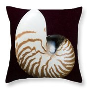 Seashell On Black Background Throw Pillow