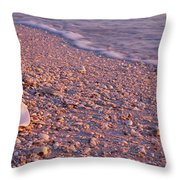Seashell On The Beach, Lovers Key State Throw Pillow