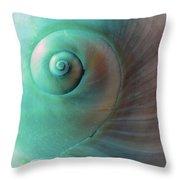 Seashell Spiral Design Throw Pillow