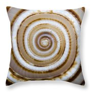 Seashell Spirals Throw Pillow