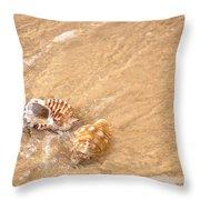 Seashell Turbulence Throw Pillow