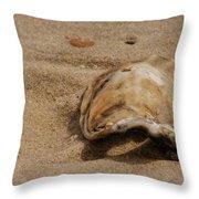 Seashells At The Seashore Throw Pillow