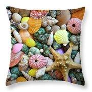 Seashells 3 Throw Pillow